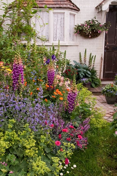 Cottage garden - I wonder if there are semi-wild and easy care plants and flowers I could use to create a look like this.  I don't do gardening.  Plant it, water it, and I'm done.