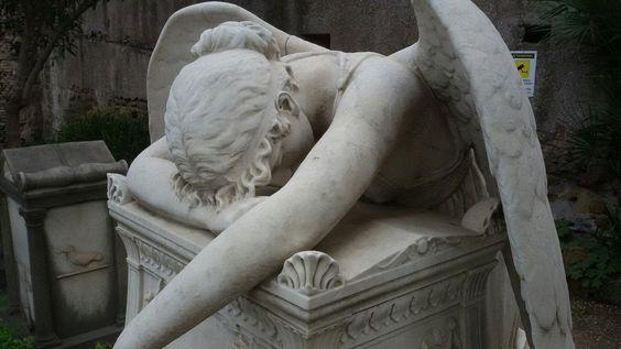 A calming spot with CATS! - Cimitero Acattolico per Stranieri, Rome Traveller Reviews - TripAdvisor