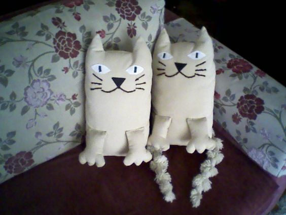 iki kedi