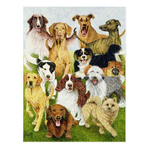 Dog Days Postcard Zazzle Com In 2020 Dachshund Illustration Weiner Dog Puppies Dachshund Mix Puppies
