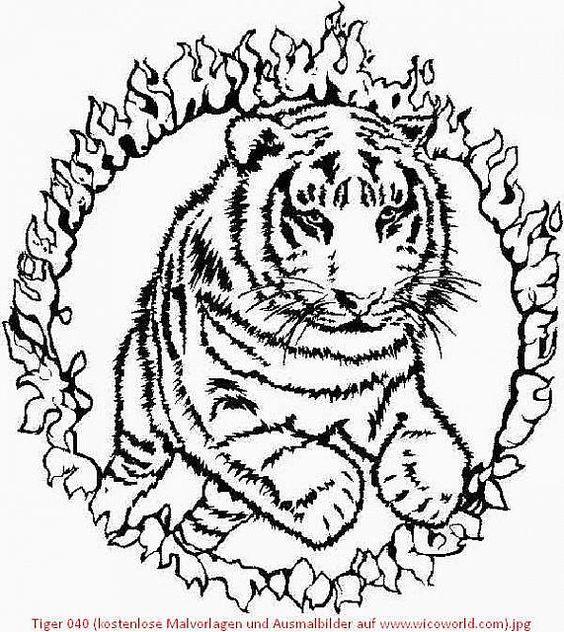 Tiger 040 (kostenlose Malvorlagen und Ausmalbilder auf www.wicoworld.com)