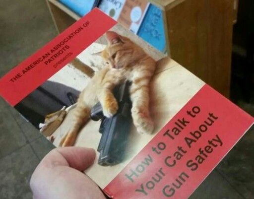 I think my cat is warning me…
