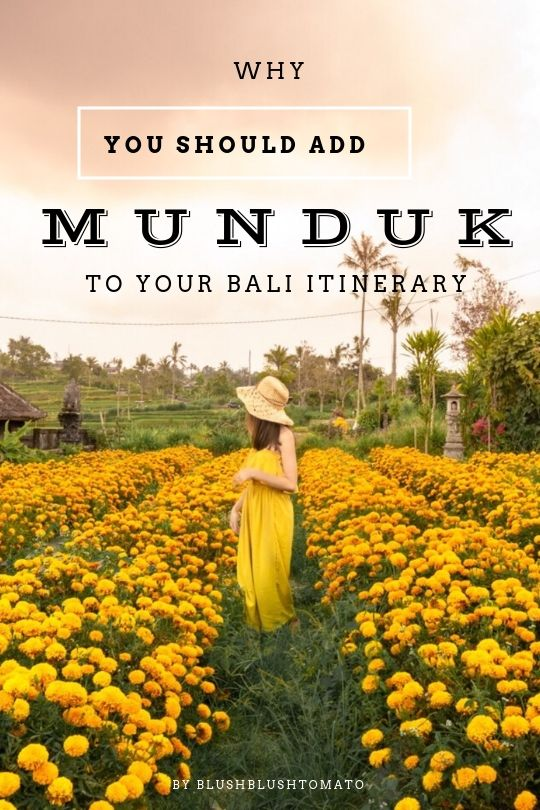 Munduk Bali Indonesia Guide Why You Should Add Munduk To Your