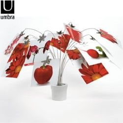 Umbra Petal Photo Stand - Memo Holder