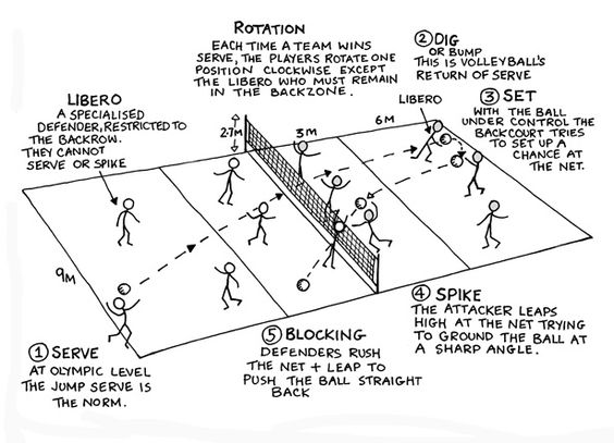 volleyball rules  volleyball and search on pinterest