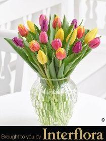 Happy Birthday Mixed Tulip Vase with Happy Birthday Balloon