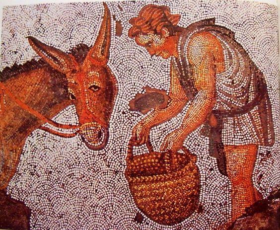 Konstantinápoly, a Nagy Császári Palota perisztiliuma, É-i és D-i portikuszok mozaikpadlója, II. Jusztinosz (565�578) /egyes vélemények szerint II. Jusztinianosz első uralkodása (685�695)/ idejéből: Öszvér etetése