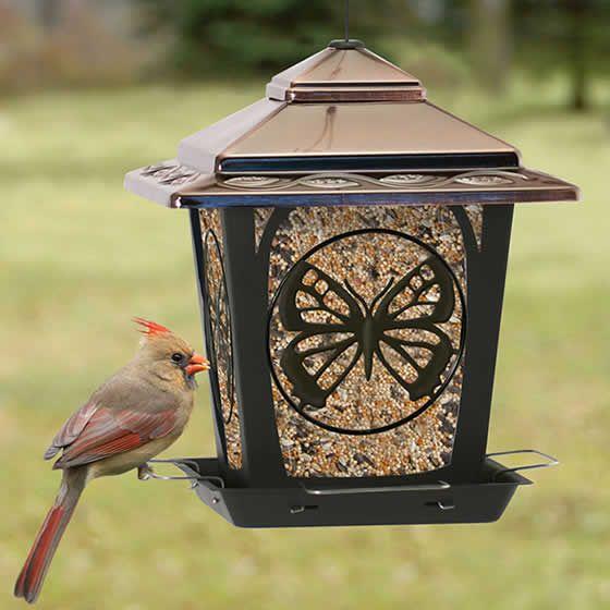 Female Cardinal on the Duncraft Butterfly Hopper Feeder