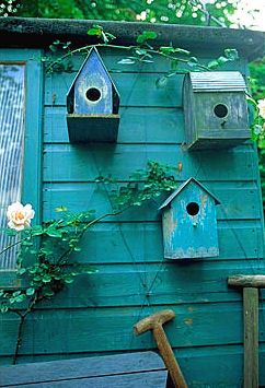 Potting shed birdhouses!
