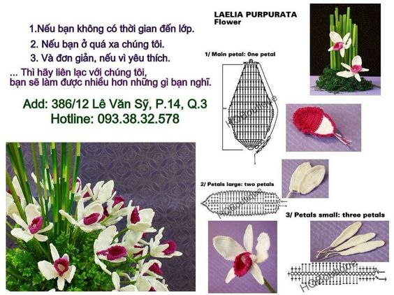 Free Crochet Pattern Orchidee : Orchidee fiori e foglie Pinterest