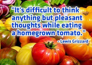 There's only 2 things money can't buy. That's true love and homegrown tomatoes.  Guy Clark, Songwriter