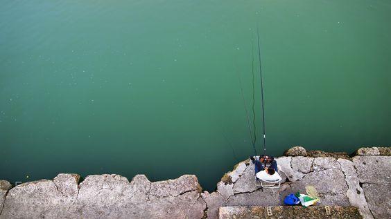 Fishing by Bienvenido