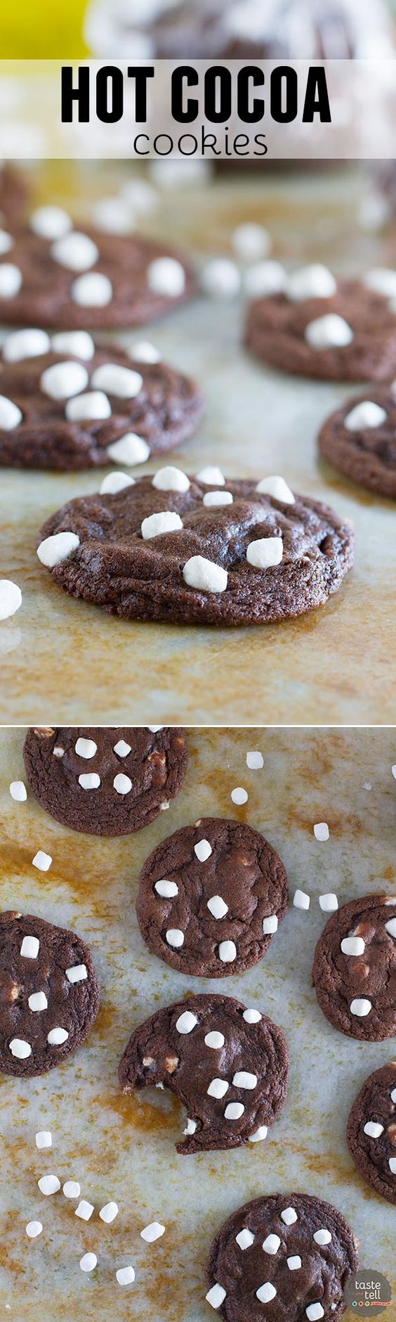 Hot Cocoa Cookies | Recipe | Cocoa Cookies, Cocoa and Mini ...