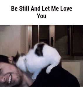 """""""Be still and let me love you"""""""
