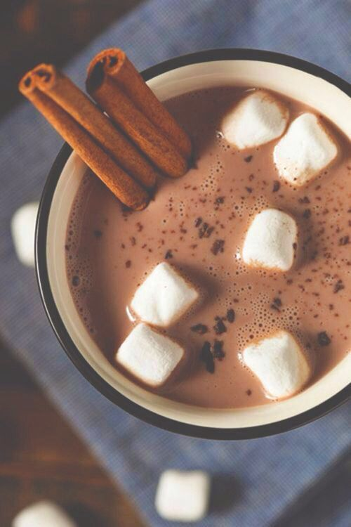 Cinnamon Hot Chocolate - just make your regular hot chocolate, but slip in some cinnamon sticks for a Christmassy flavour
