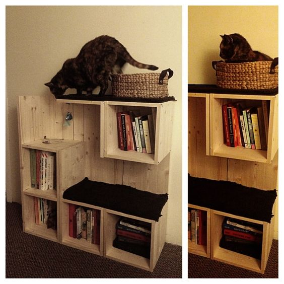 DIY Pinspiration: no instructions but this bookshelf and cat tree concept is awesome and looks pretty simple to make!