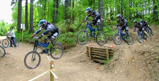 Using Logs To Build A Jump In A Mountainbike Trail With Chicken
