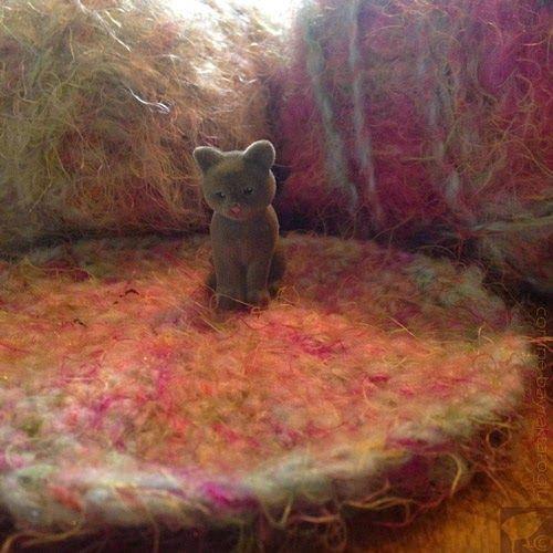 cute cat on crochet rug