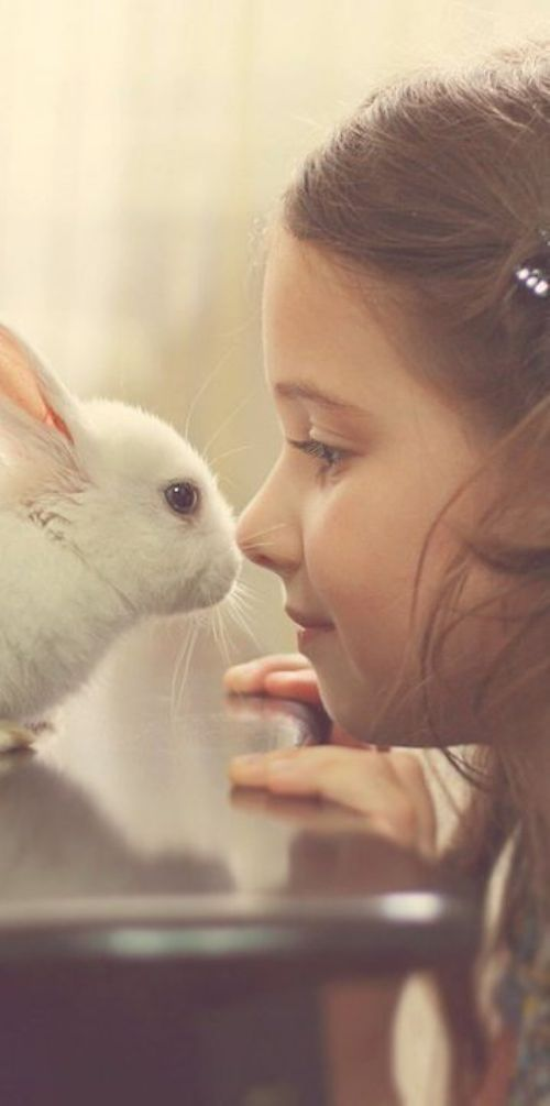 All Cristophe Professional products are cruelty free. We love our little critter friends too much!