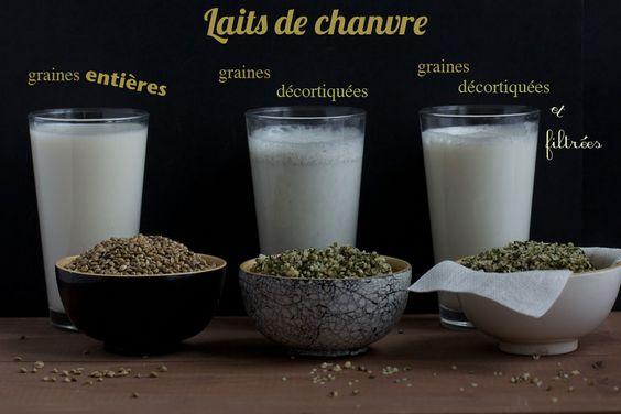 Les bienfaits du chanvre : huile, graine décortiquée & entière, lait, farine, poudre protéinée, beurre