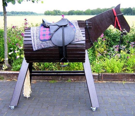 Pin Op Paarden Musthaves