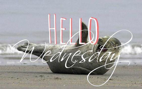 Happy Wednesday coastal lovers ~:
