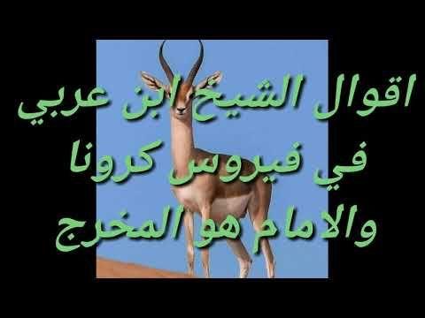 المهدي المنتظر اقوال الشيخ ابن عربي Youtube Moose Art Animals Art