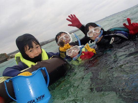 サンゴ礁シュノーケル! - http://www.natural-blue.net/blog/info_259.html