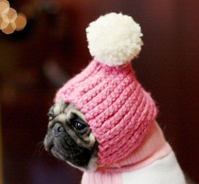 Daily DIY Pet Pattern - How To Crochet A Pom Pom Hat For A ...