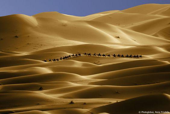 © Photoglobus, Rene Przybilla, Die Karawane von Marrakesch