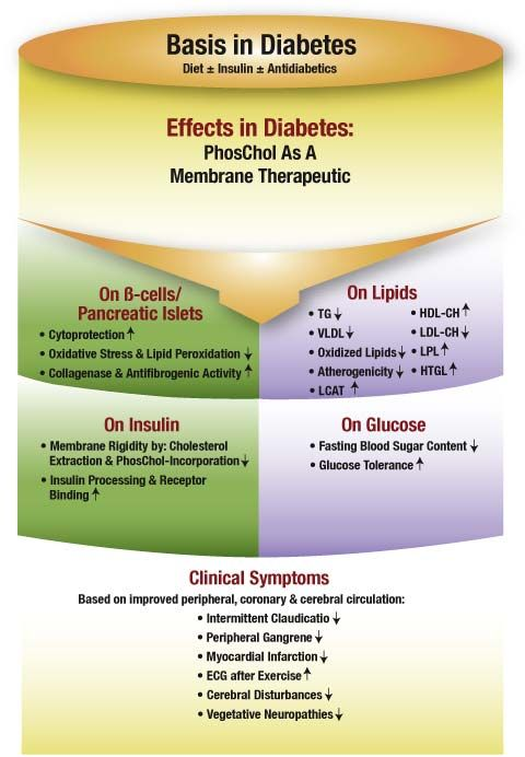 Basis In Diabetes Chart  Medical Resources    Diabetes