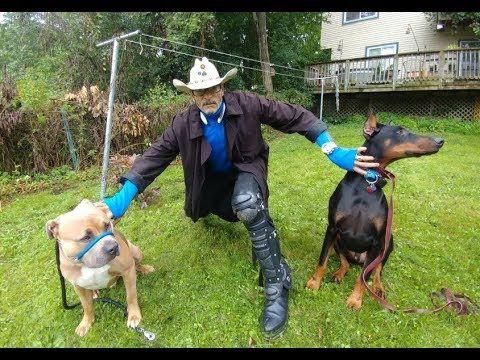 Pin On Best Dog Trainer In Michigan Dog Whisperer Big Chuck Mcbride