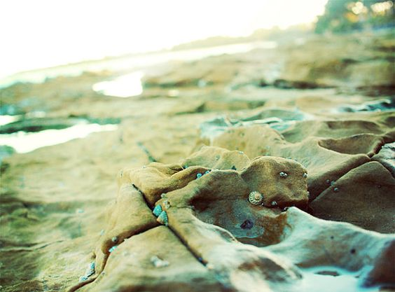 Beach Adventure. Fine Art Photography. Summer by happeemonkee, $35.00