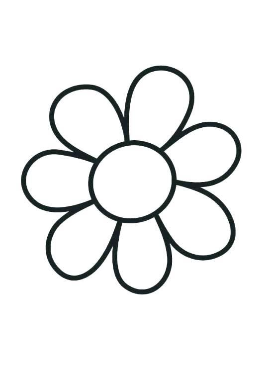 Flower Outline Coloring Page Free Stock Photo Flower Coloring