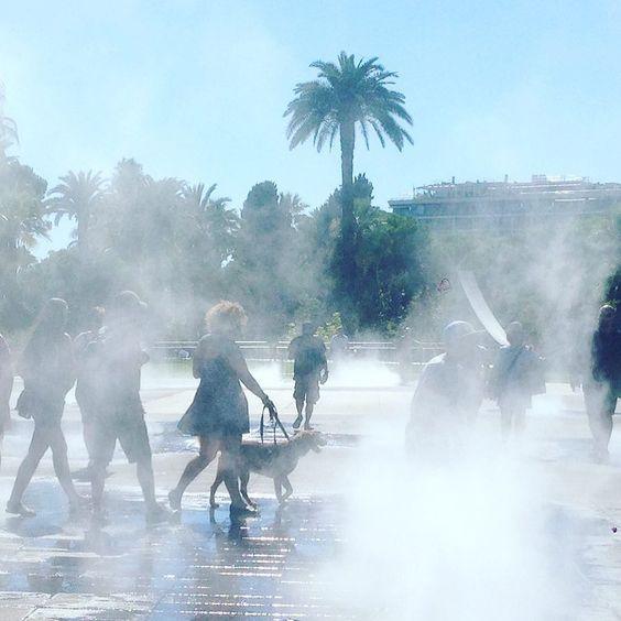 When the weather so hot in Nice... #pattifurry #nice #nizza #nizza #nicefrance #hot #summer #dog #dogsofinstagram #weeklyfluff #cutepetclub #honden #cutedog #streetdog #rescuedog #rescuedogsofinstagram #petbox #cane #chien #dogscorner #ohmydog #dog_features #dailybarker #bestwoof #ruffpost #hund