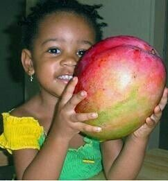 Little girl with huge red gold green mango. Antigua and Barbuda