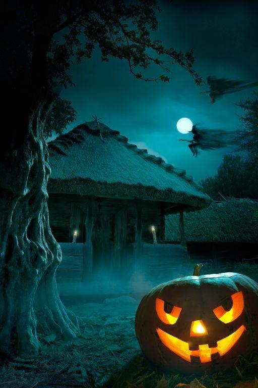 Halloween Creepy Night Photo Background Studio Backdrop