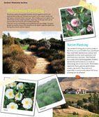Flourish -  waterwise gardens