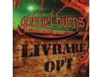 40 / Livrare Opt - Gabriel Burns #Ciao