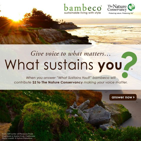 #whatsustainsyou #bambeco #thenatureconservancy