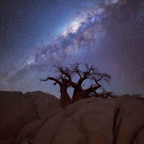 kubu-island-Botswana - África ♥ ♥