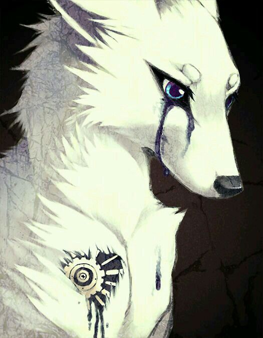sad wolf crying wwwimgkidcom the image kid has it