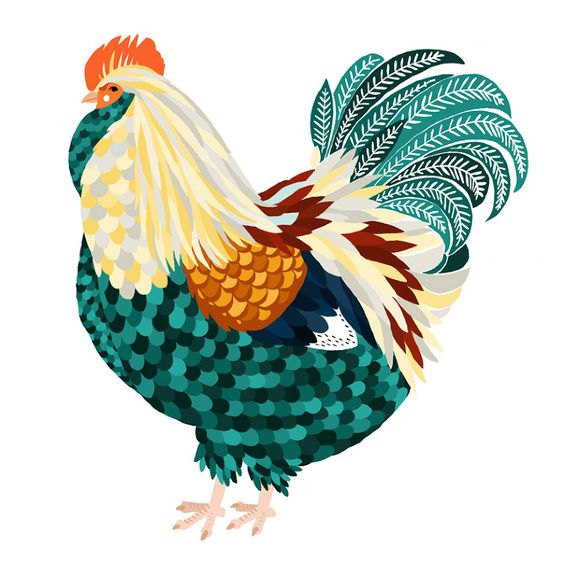 Chickens - Art and illustration by Amy Blackwell: