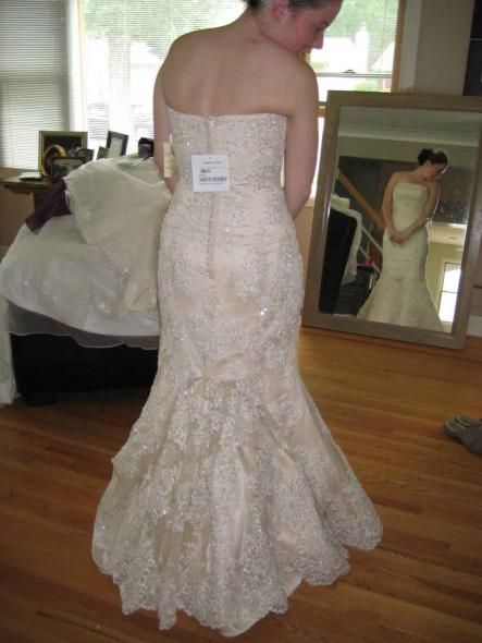 5 Point French Bustle Bridal Gown Pinterest French