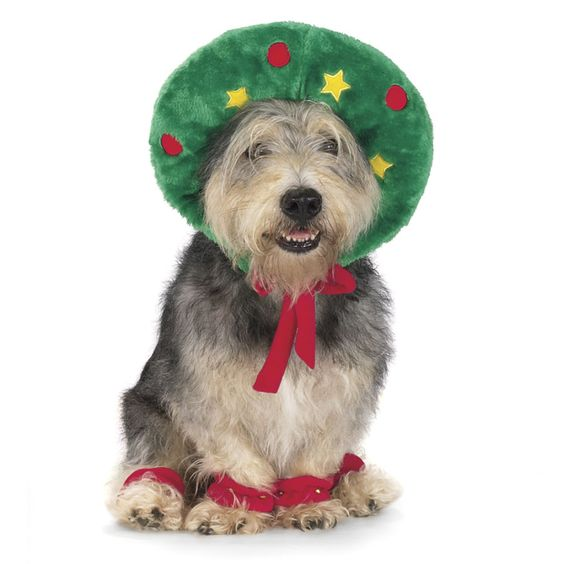Holiday Wreath Outfit: For your best friend! Comes with a soft, plush wreath which adjust to cover the head securely and four leg scrunchies with jingle bells. Available in 4 sizes. #Dog_Holiday_Outfit