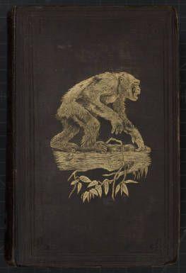 Du Chaillu, Paul. Explorations in Africa. 1861. Book cover. :: Discovering Human Antiquity