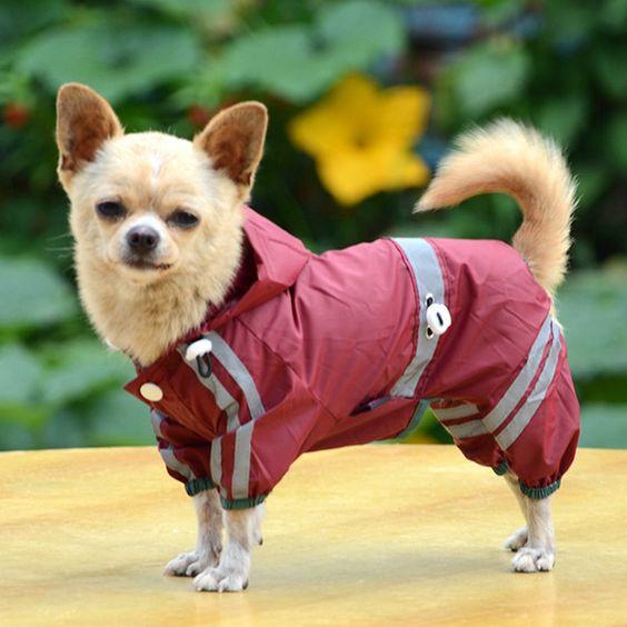 Новый Питомец Собака Щенок Кошка Блестят Бар Капюшоном Водонепроницаемый Дождь Плащ Куртка Одежда купить на AliExpress