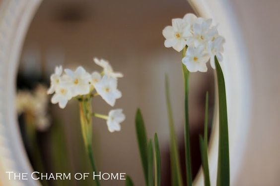 The Charm of Home: Home Sweet Home #46