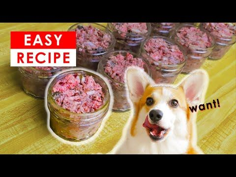Best Homemade Raw Dog Food Recipe Made Easy Youtube