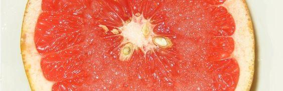 Einfacher Fruchtkern stiehlt Medikamenten die Show